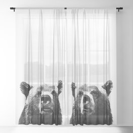 Black and white bear portrait Sheer Curtain