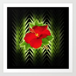 red hibiscus at midnight Art Print