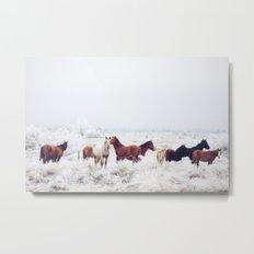 Winter Horseland Metal Print