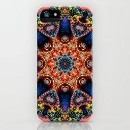 BBQSHOES: Kaleidoscopic Fractal Digital Art Design 1702K iPhone Case