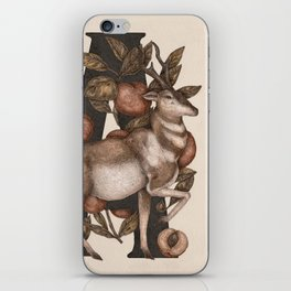 Letter A: Antelope & Apricots iPhone Skin