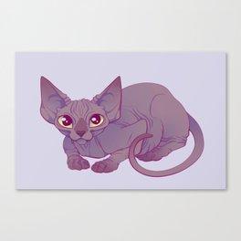 Happy Sphynx Cat Canvas Print