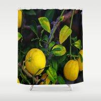 berserk Shower Curtains featuring Winter Lemons by oneofacard