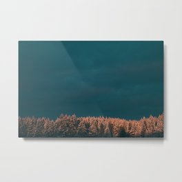 Forest XX Metal Print