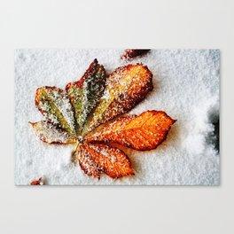 End of autumn Canvas Print