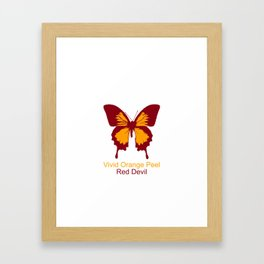 Ulysses Butterfly 2 Framed Art Print