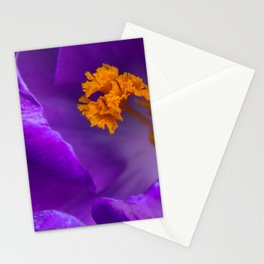 Deep purple and orange crocuses Stationery Cards