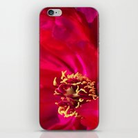 peony iPhone & iPod Skins featuring Peony by Christine Belanger