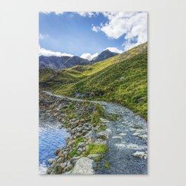 Path To Snowdon Canvas Print