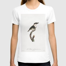 Black-billed Tamatia from Histoire Naturelle des Oiseaux de Paradis et Des Rolliers (1806) by Jacque T-shirt