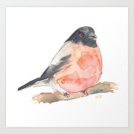 Clarence the Bullfinch Art Print