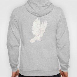 Dove in White Hoody