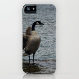 Showing Her Dominance iPhone Case