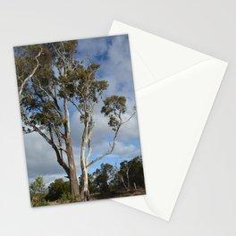 Australian Gum Tree Stationery Cards