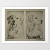 labrador Art Prints featuring Labrador  by JMck Artwork