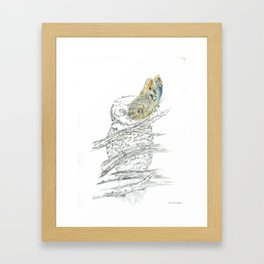 Miss Owl and Butterfly friend Framed Art Print
