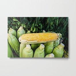 Yellow Corn Over Green Cobs Metal Print