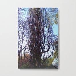 Big hazelnut - shrub. Metal Print
