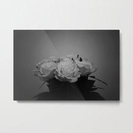 Black and White Roses (5) Metal Print