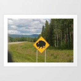 Warning Buffalo ahead! Art Print