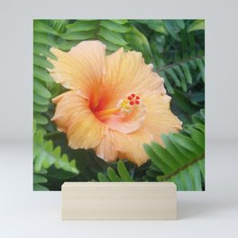 Orange Hibiscus Flower Mini Art Print