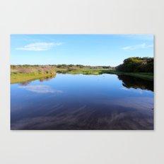 Myakka River State Park Canvas Print