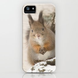 Hi there - what's up? iPhone Case