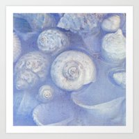 shells Art Prints featuring shells by Claudia Drossert