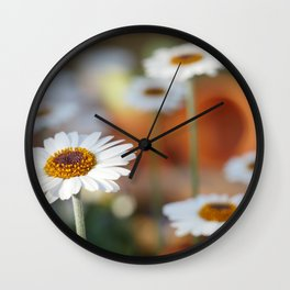 Daisys | marguerite Wall Clock