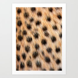 Animal Print Pattern Real Cheetah Fur Pattern Art Print