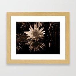 A lily Framed Art Print