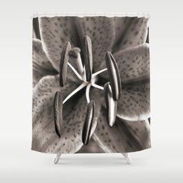 Lilly - Duplex Shower Curtain