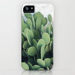 Cactus Cacti Green Desert iPhone Case