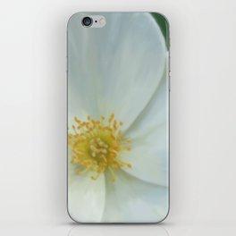 Ambience  iPhone Skin