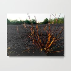 Where There's A Will Metal Print