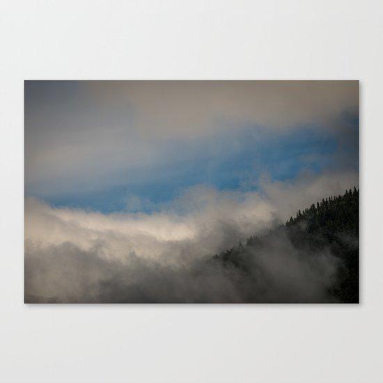 Olympic National Park Canvas Print