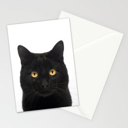 Black Cat looking at the camera Stationery Cards