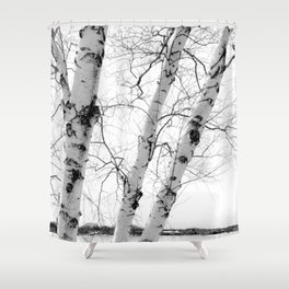 White Birch Shower Curtain