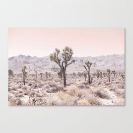 Joshua Tree Leinwanddruck