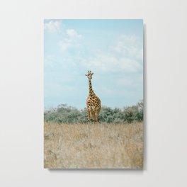 Ngorongoro Crater, Tanzania XIV Metal Print
