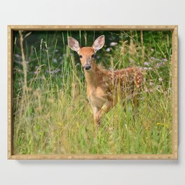 Little Baby Deer Serving Tray