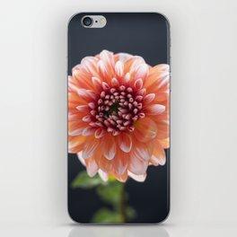 The Eye of Dahlia iPhone Skin