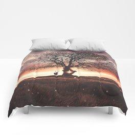 Exoplanet Comforters