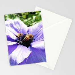 making hunny Stationery Cards