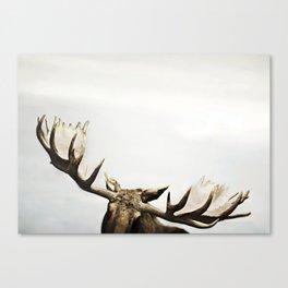 fig. 02 | antlers Canvas Print