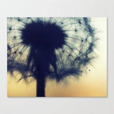 dandelion green IX Canvas Print
