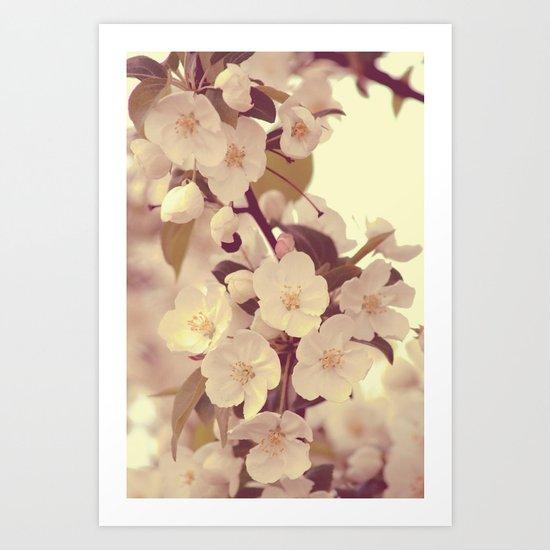 Floral 05 Art Print