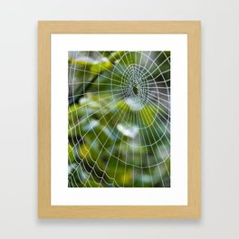 Spider's web Framed Art Print