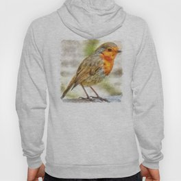 Christmas Robin Winter Watercolor Hoody