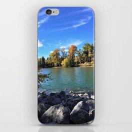 Autumn Bow iPhone Skin